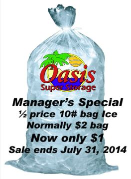 10 Lb. bag of Ice only $1.00